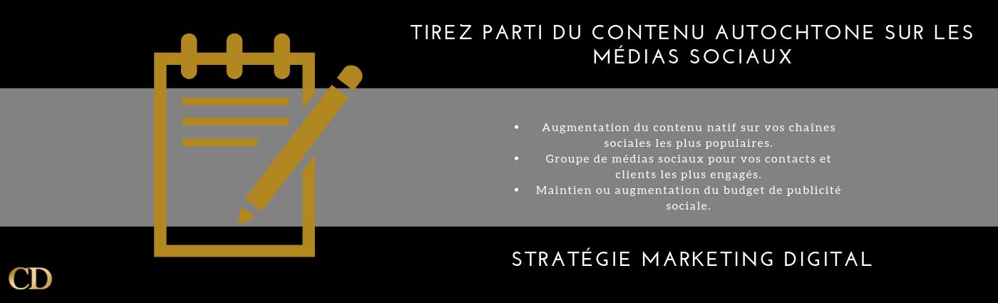 stratégie marketing digital-cdigitale