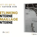 Le guide du Netlinking Interne : Tout ce qu'il faut savoir !