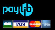 cdigitale paiements